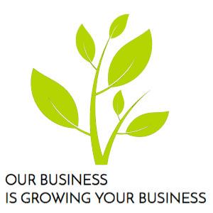 Business Growth Through Online Marketing & Website Design